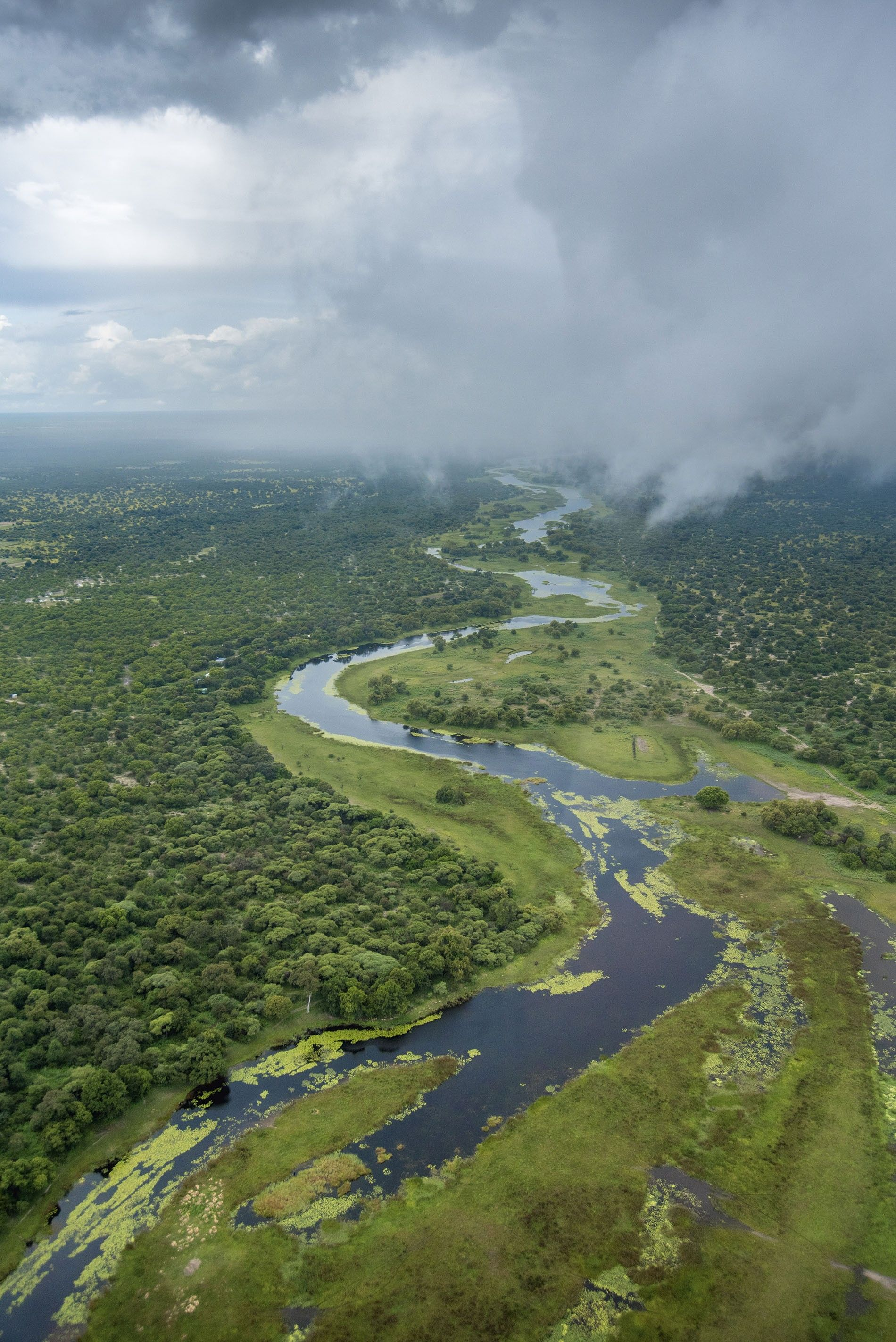 Botswana river