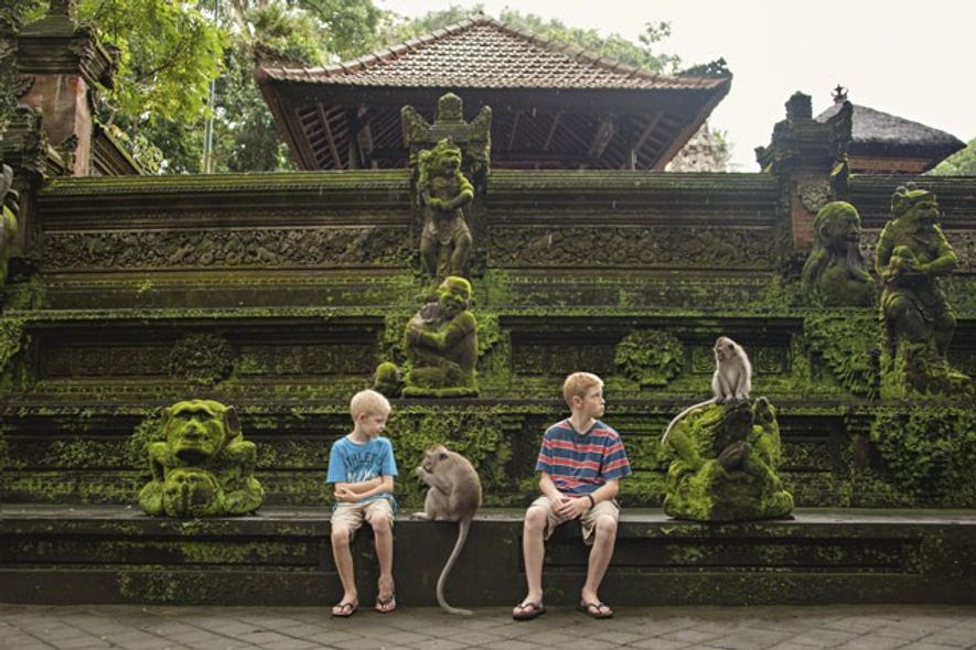 Monkeys in Ubud.