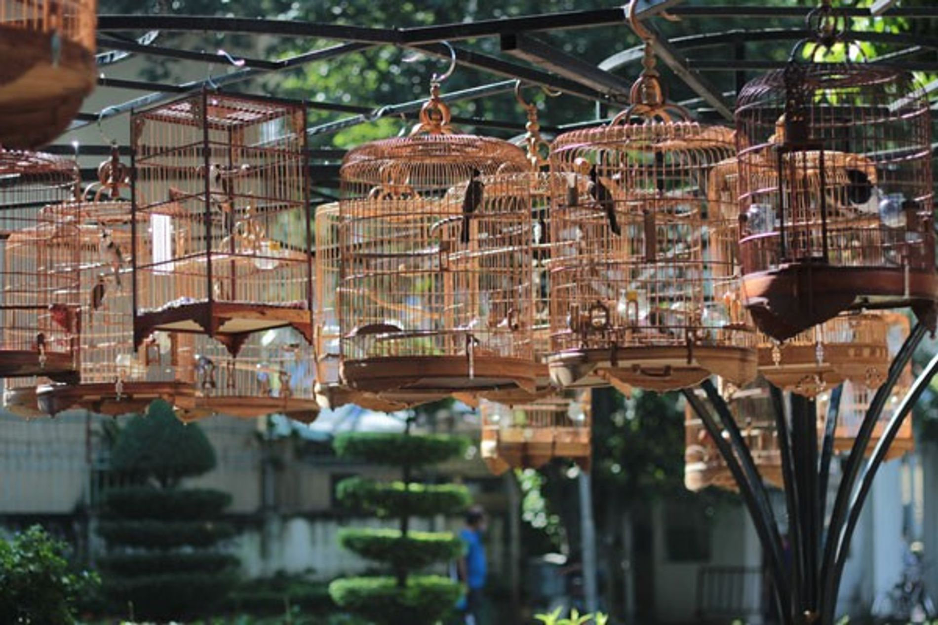 Ho Chi Minh City: A Vespa tour
