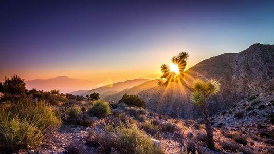 California cool: Sounds of the desert