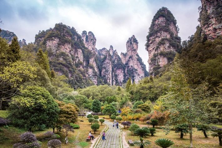Zhangjiajie National Forest Park. Image: SuperStock