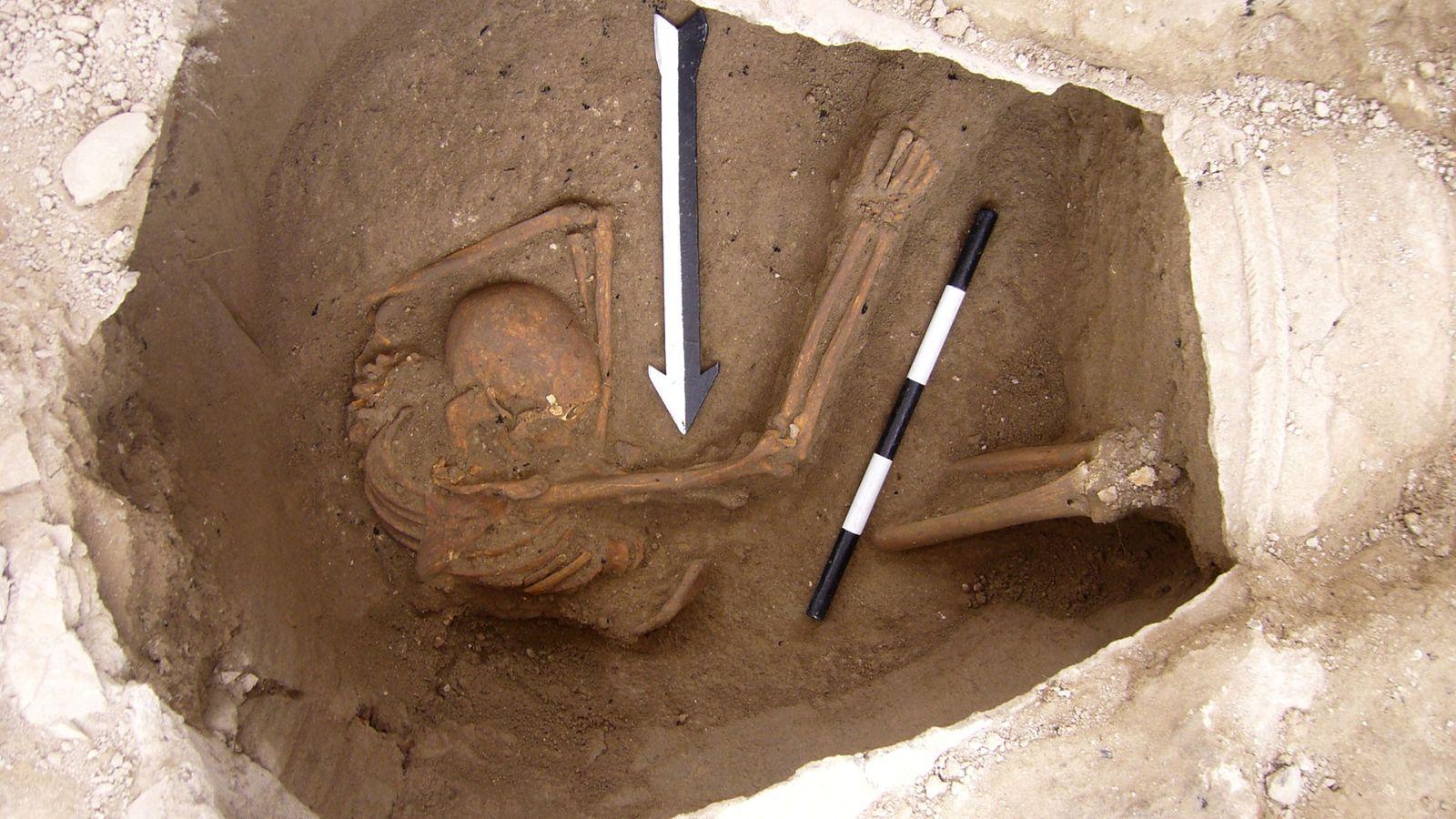 Canaanite-DNA-study