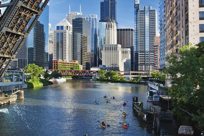 Kayakers on the Chicago River beneath The Loop's skycrapers