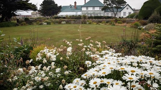 Falkland Islands: Local charm
