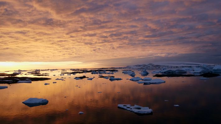 See Antarctica like never before