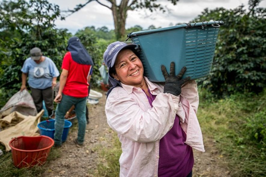 Coffee Farmer, farm to table in Costa Rica