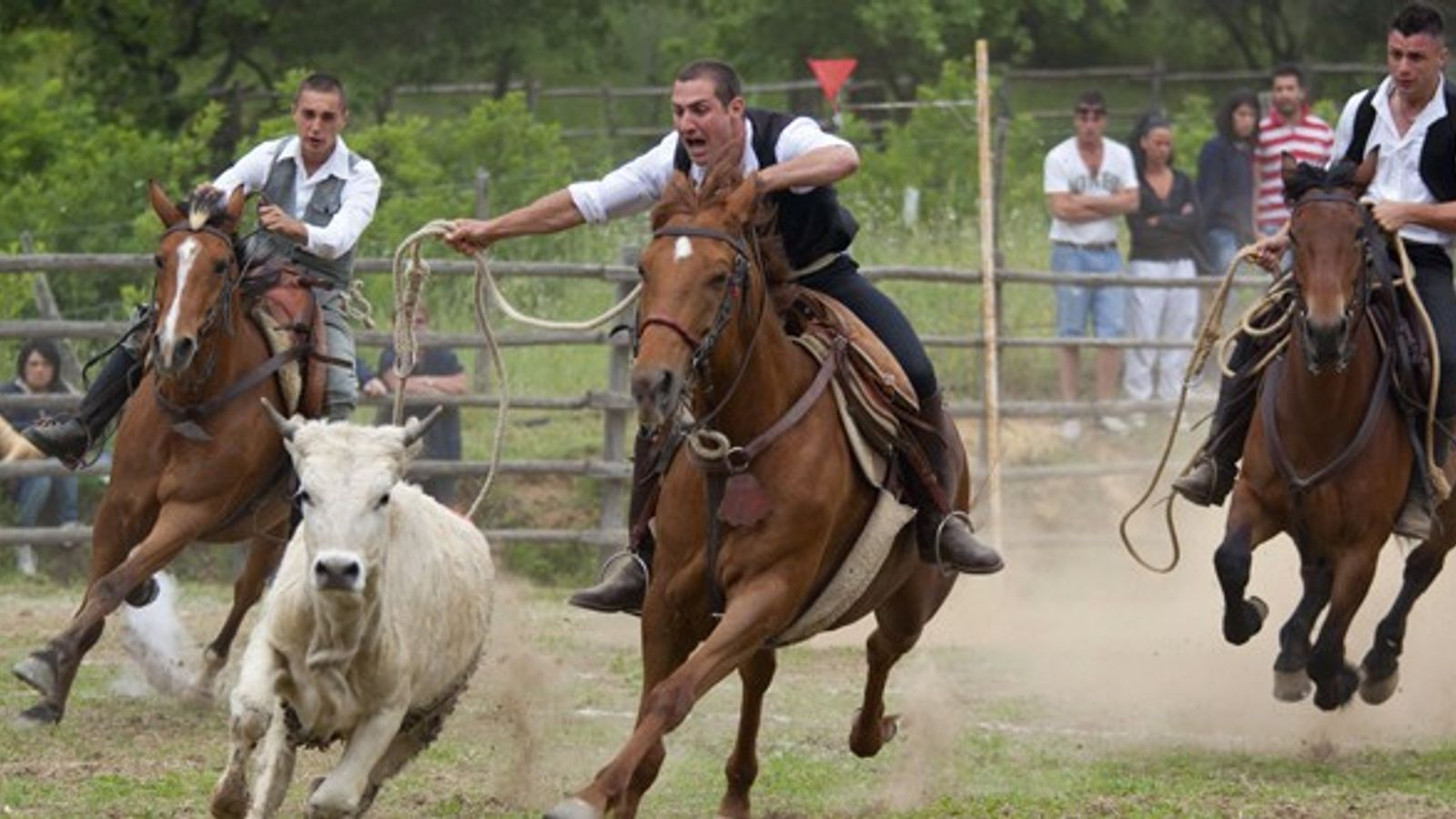 Butteri cowboys at a ranching tournament, Canale Monterano