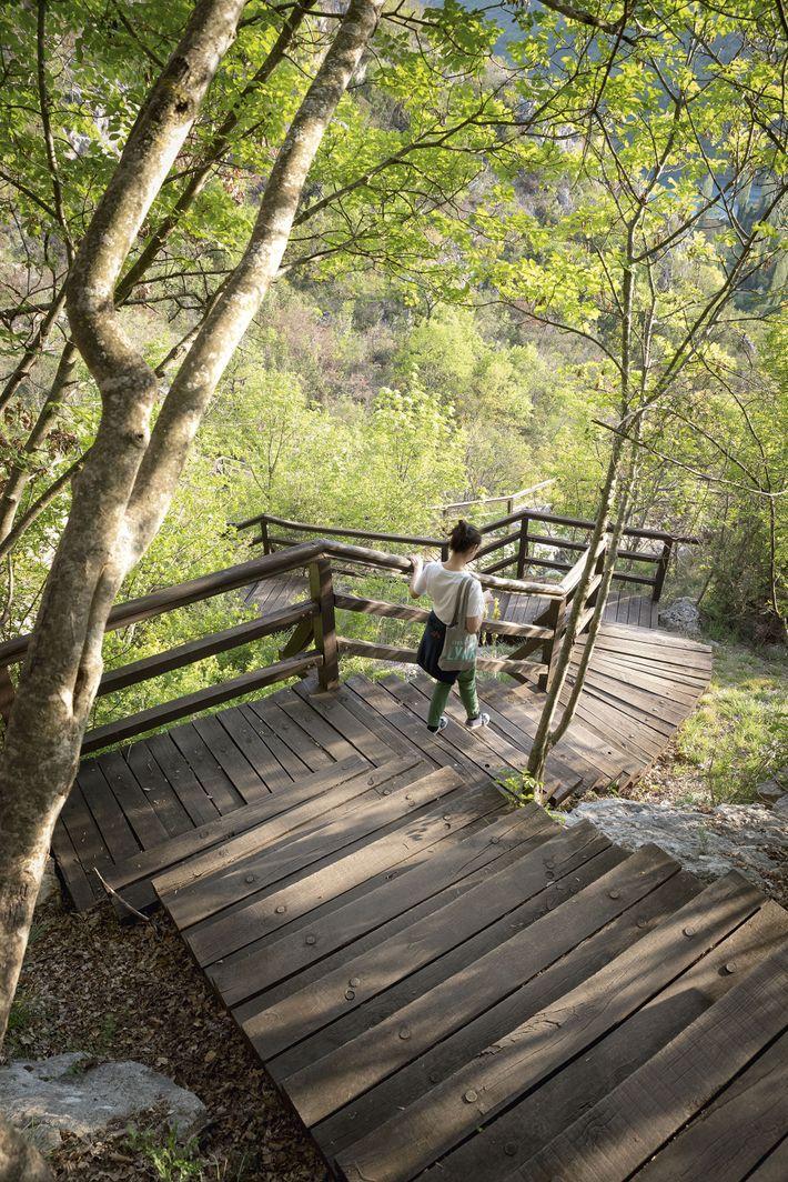 Wooden steps, Krka National Park; Šibenik