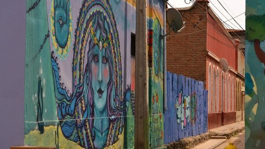 Valparaíso: Street art