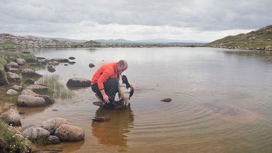Donegal: Hidden depths of Owey Island