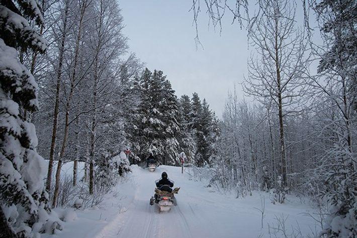 Snowy Swedish Adventures.