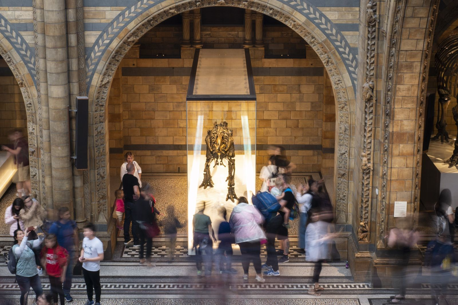 Crowds swirl around the Mantellisaurus skeleton in Hintze Hall, the grand gallery of London's Natural History ...