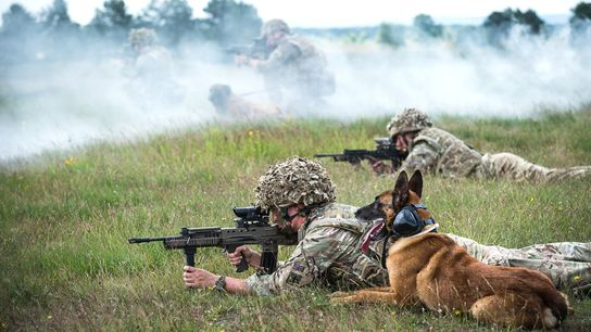 Dogs and their handlers from 102 Military Working Dogs Squadron, part of the 1st Military Working ...