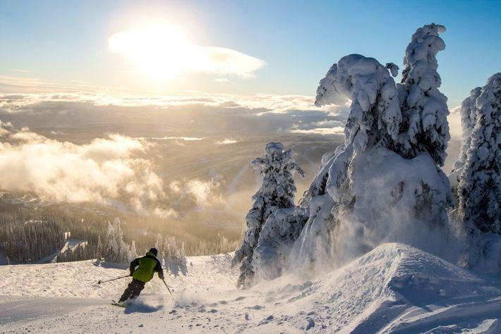 Downhill skiing at Sun Peaks Resort, British Columbia, Canada. Image: Destination BC/Ryan Creary