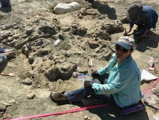 University of Manchester palaeobotanist Dr. Victoria Egerton at the dig.