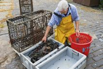 Fisherman on the quayside in the fishing village of Crail