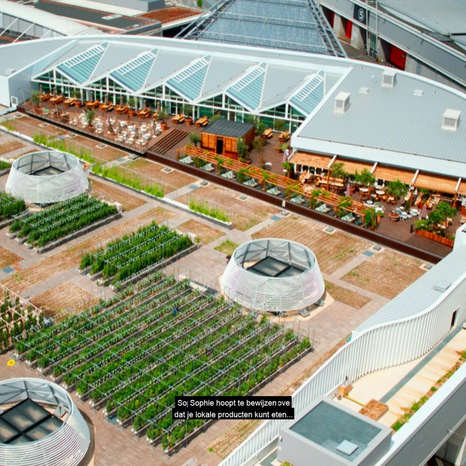 Discover the world's largest urban rooftop farm.
