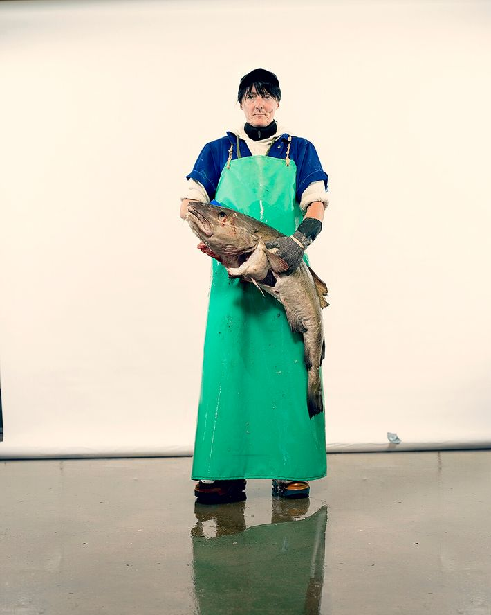 Patricia Wylie holds a cod, Peterhead, Scotland.