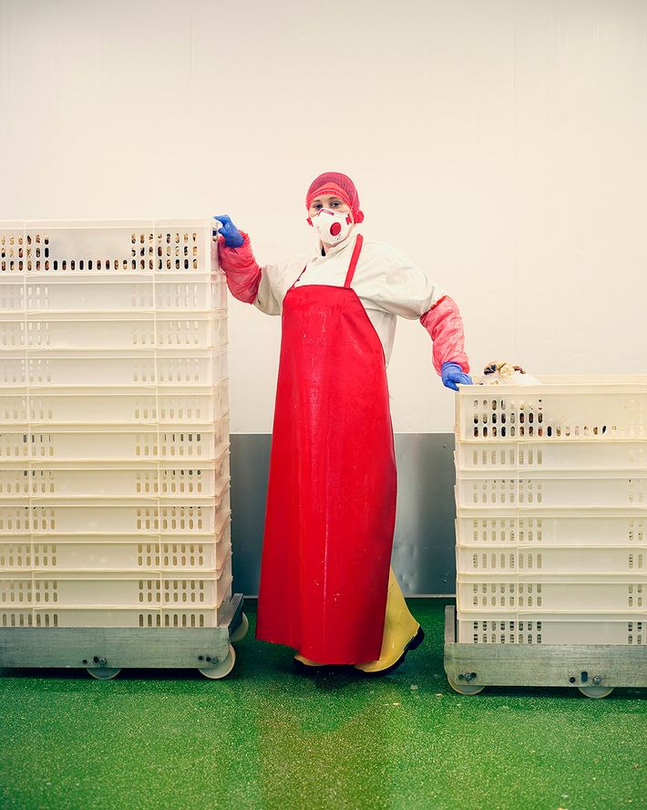 Paulina Efczynska, a shellfish processor at Stromness, Orkney.