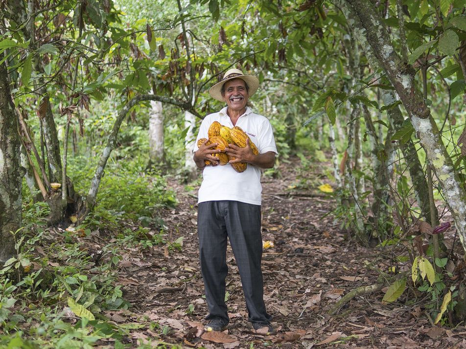 Photo gallery: How Ecuador is falling back in love with chocolate
