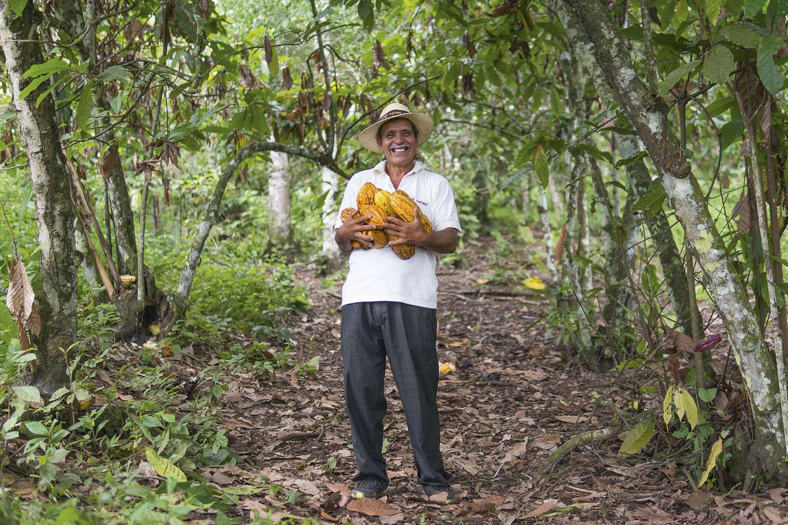 How Ecuador is falling back in love with chocolate