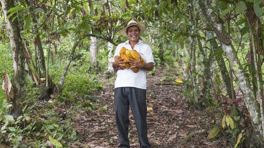 Farmer Divino at Piedra de Plata with armfuls of Ancient Nacional cacao pods