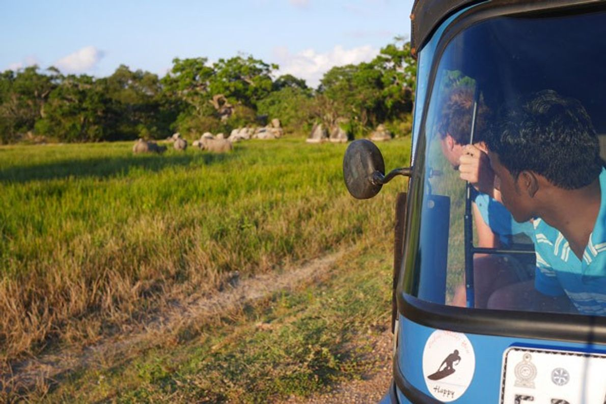 Sri Lanka: A tuk-tuk safari
