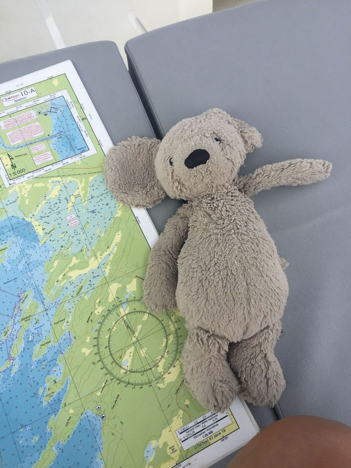 Navigation chart and Peggy the teddy