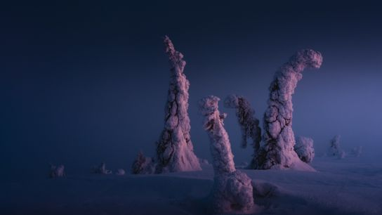 """Dawn in the Riisitunturi National Park. Stian Klo: """"I had seen this composition the day before, ..."""