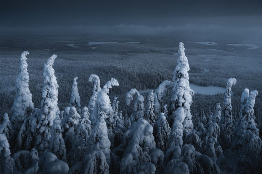 "The view towards Russia from the Kuntivaara fell. Stian Klo: ""I'm very attracted to winter scenes ..."