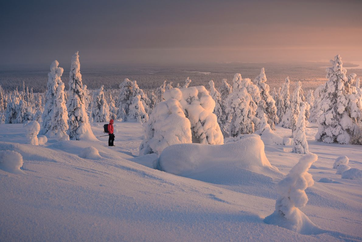 """Stian Klo: """"A pastel sunset in the Riisitunturi National Park. I decided to include my friend ..."""
