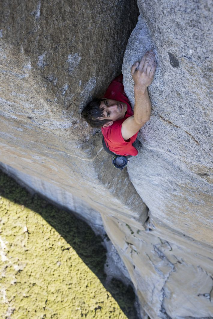 Alex Honnold seems embedded in the rockface at the Scotty-Burke offwidth pitch of Freerider on Yosemite's ...