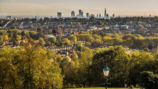 London becomes first 'National Park City'. What does that mean?