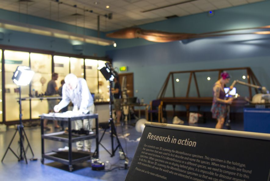In the public Marine Invertebrates Gallery, under the watchful eye of a giant squid model, the scanning takes place.