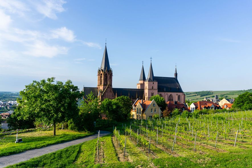 The renaissance of Riesling: five to try