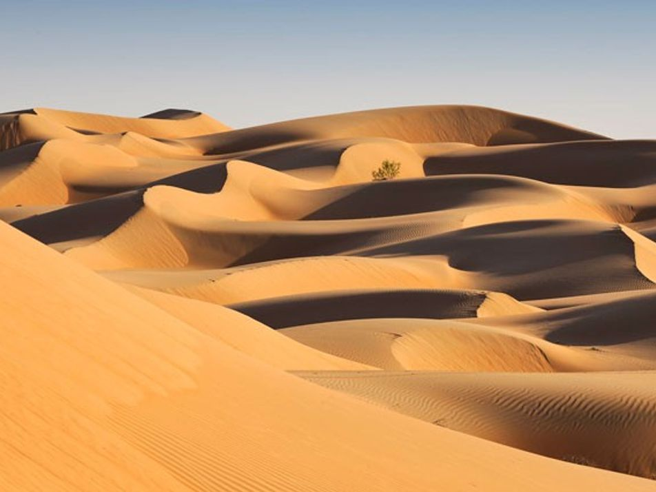 Shariqiya Sands: A desert wilderness