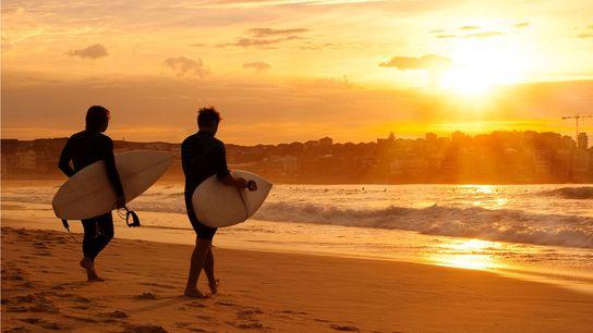 Surf at dawn, Bondi Beach, New South Wales