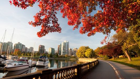 Vancouver: A force of nature