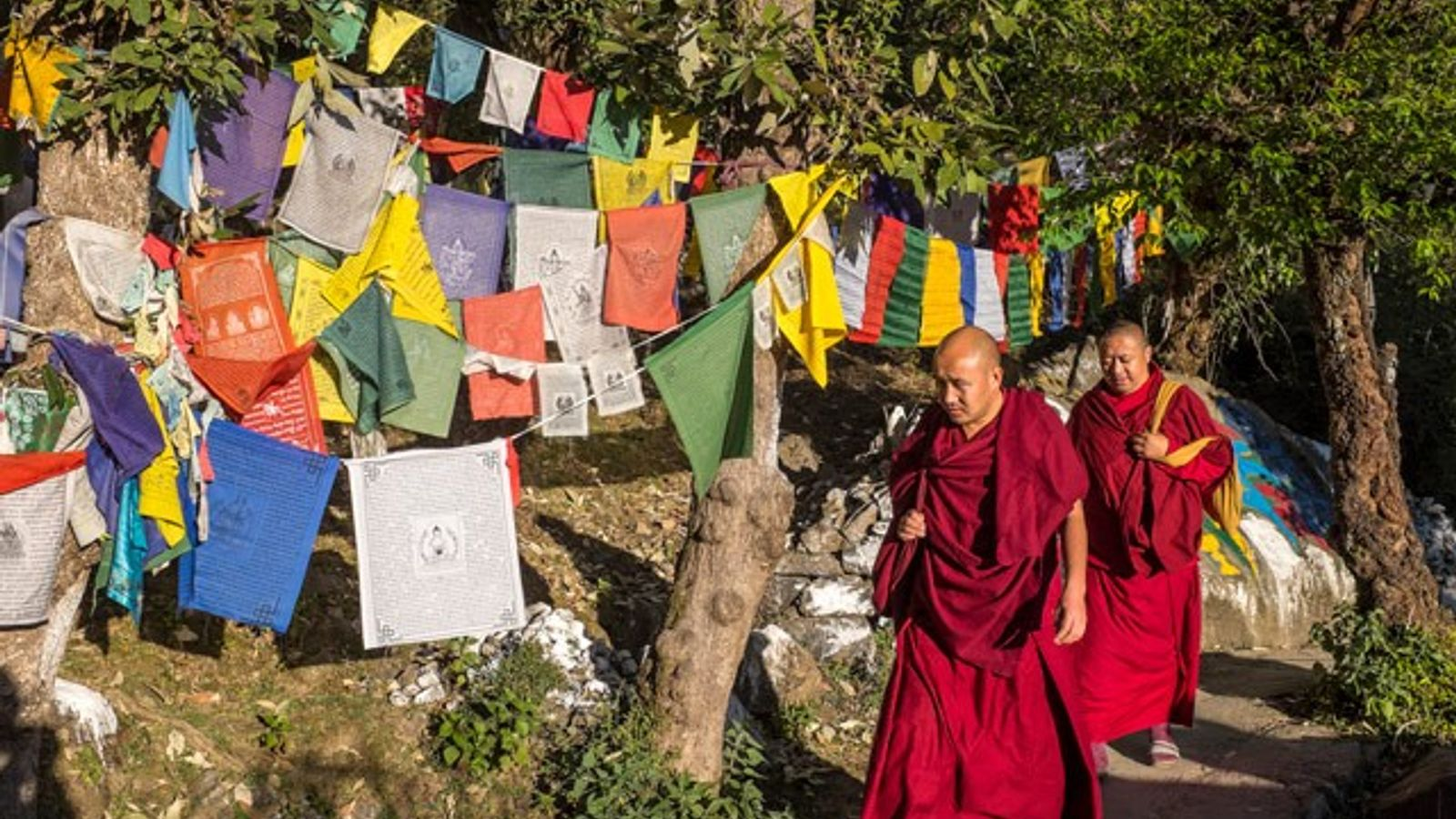 Buddhist monks at the Dalai Lama's residence in McLeod, India