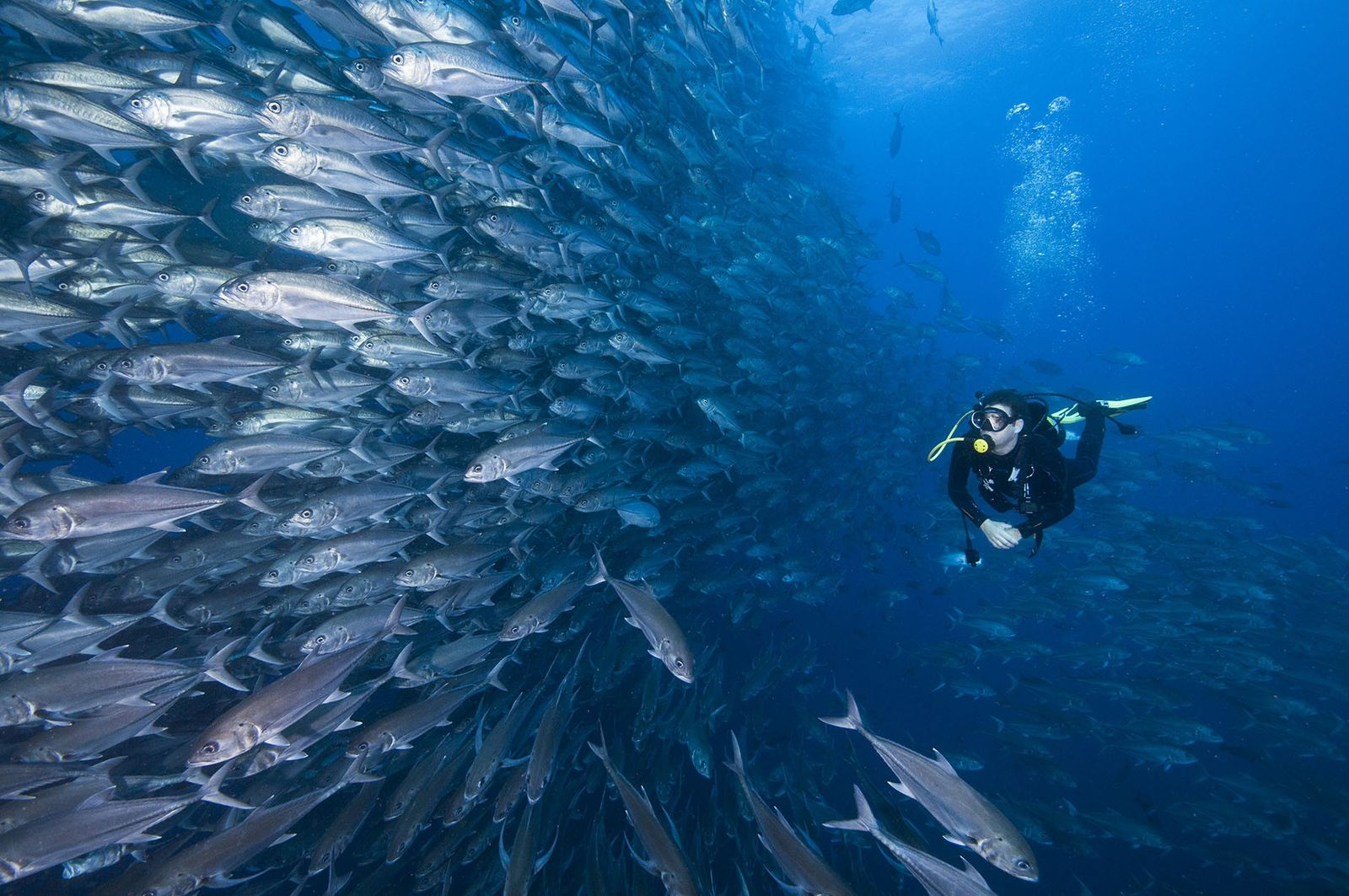 How to get to the world's most remote dive sites
