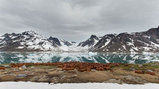 See the Abandoned WWII Base on Greenland Leaking Toxic Waste