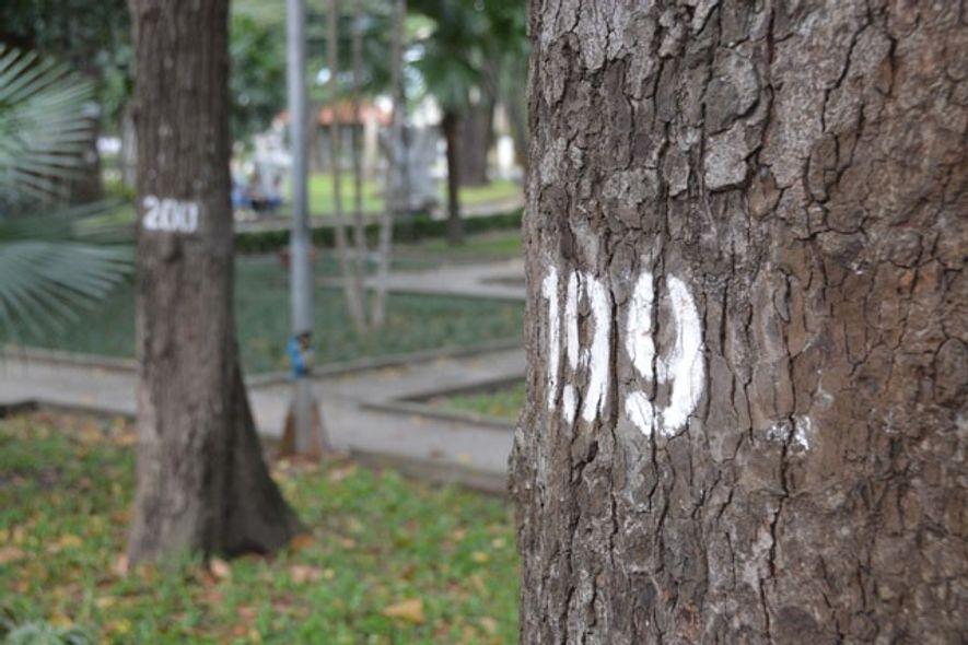 Tao Dan Park, Ho Chi Minh City