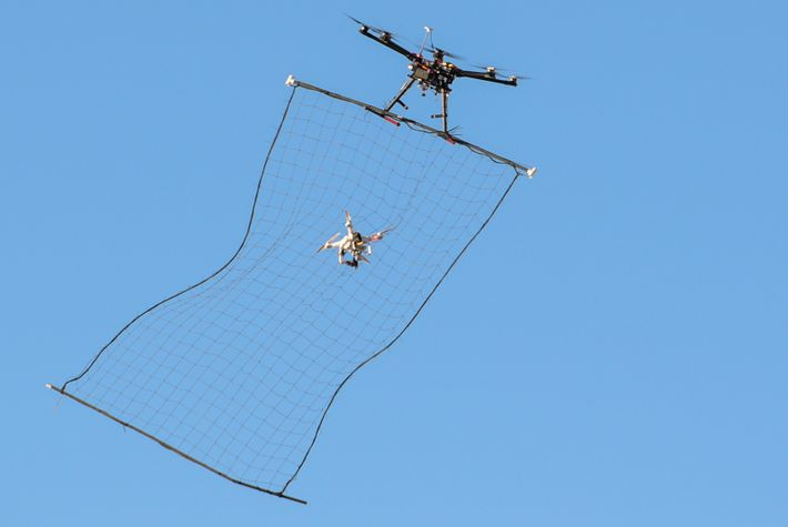 An unmanned aerial system 'hunter-killer' drone captures a Phantom 3 drone in its net mid-flight at ...