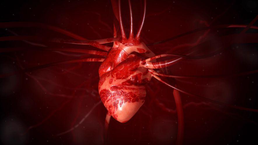 Heart 101