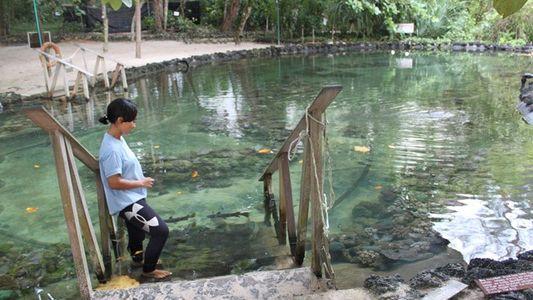 Langkawi: Rescuing a reef