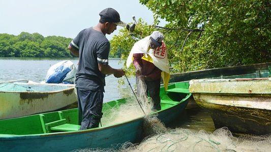 Honduras: Lake placid