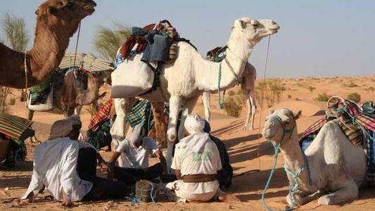 Tunisia: Into the desert
