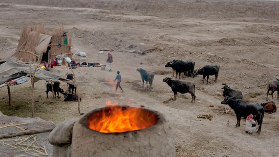 IRAQ. Chibaish. 2014. An oven burns near a Marsh Arab family's reed hut. They have moved, ...