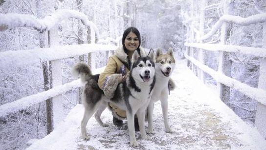 Jade and huskies