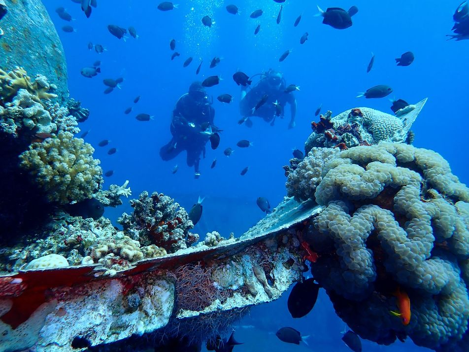 Aqaba: Going with the flow